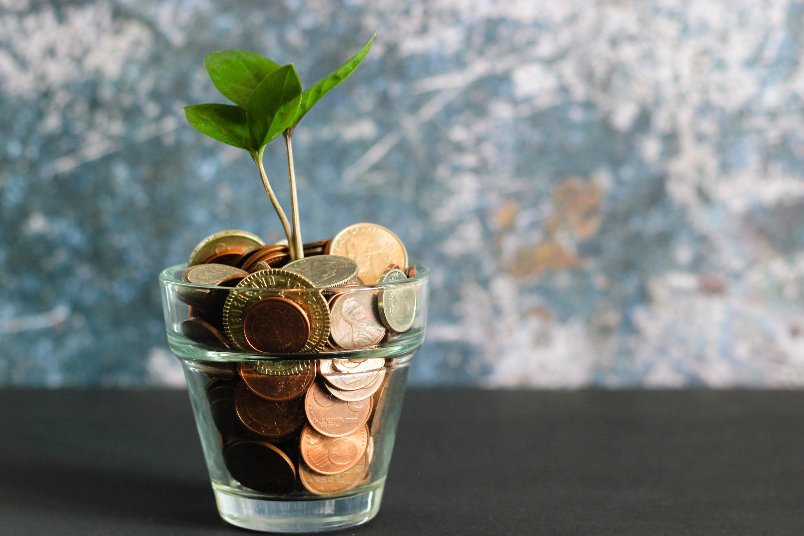 coins in a glass with plant coming out of the top