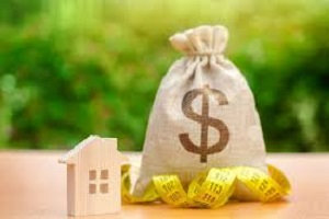Are Reverse Mortgages Expensive?